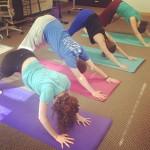 startup institute yoga